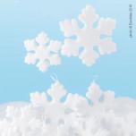 Cristalli di Neve