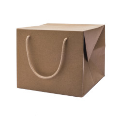 Bag Box Portapanettone Kraft Avana
