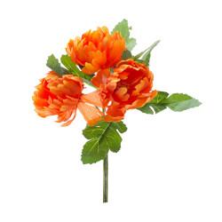 Pick Peonia Arancio