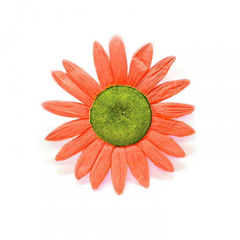 Margherite Decorative per Vetrina Arancio