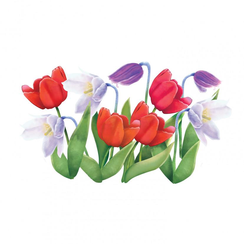 Vetrofania Tulipani