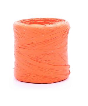 Nastro Polyraphia Arancio