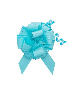 Coccarda Raphia Pull Bow Pacific Blue