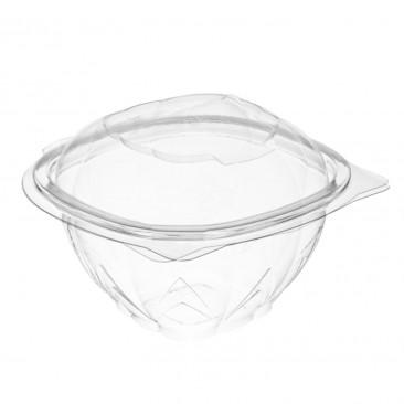 Contenitore Plastica con Coperchio Trasparente