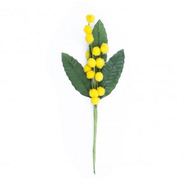 Pick Mimosa