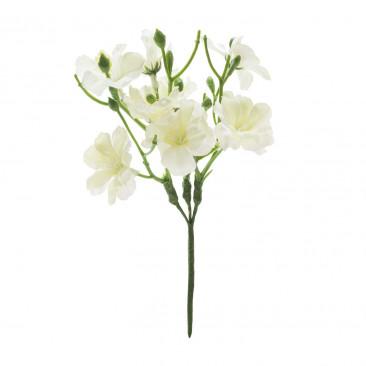 Pick Azalea Bianco