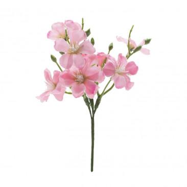 Pick Azalea Rosa