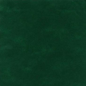 Tovaglia coprimacchia in TNT Verde