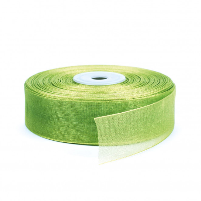 Nastro Organza Verde Chiaro