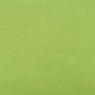 carta-verde prato